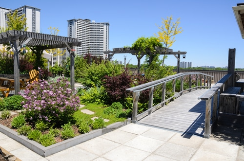 Typical Green Roof Garden atop a skyscraper